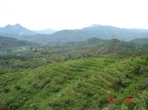 020-beijing 2006 Great Wall